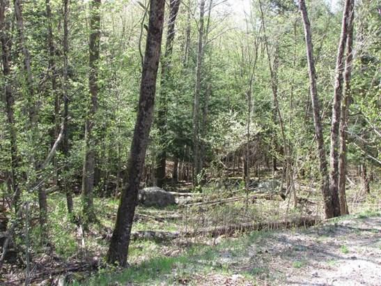 111 Lanfear Road, Stony Creek, NY - USA (photo 5)