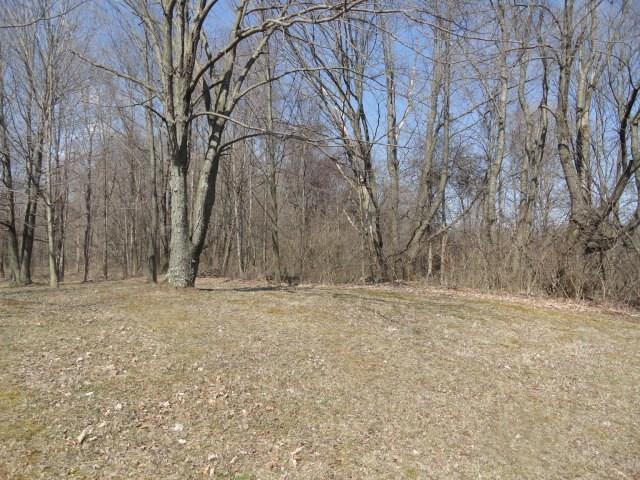 5604 St Rt 42, Mount Gilead, OH - USA (photo 3)