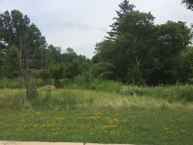 725 Som Center Road, Mayfield Village, OH - USA (photo 4)
