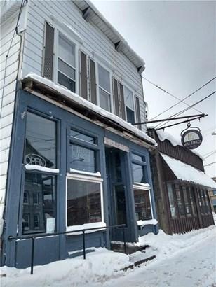 7 Mill Street, Sodus, NY - USA (photo 2)