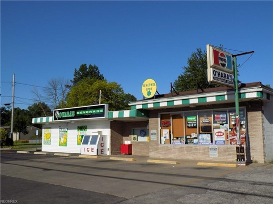 2308, 2314, 2318 Leavitt, Lorain, OH - USA (photo 1)