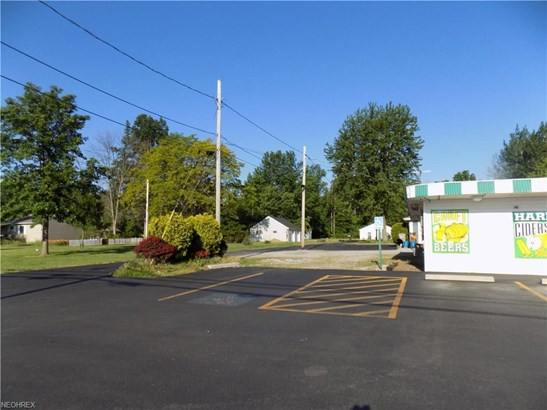 2308, 2314, 2318 Leavitt, Lorain, OH - USA (photo 3)
