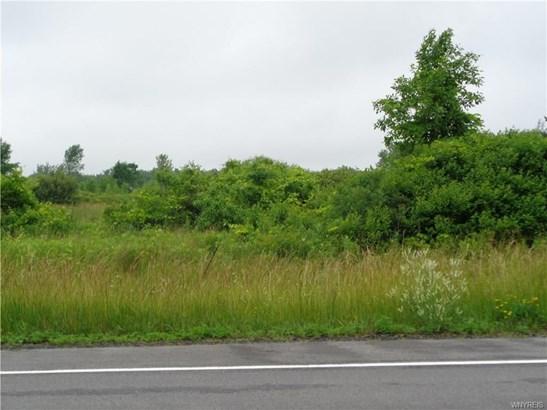 9905 Lewiston Road, Royalton, NY - USA (photo 1)