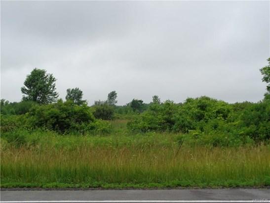 9905 Lewiston Road, Royalton, NY - USA (photo 2)