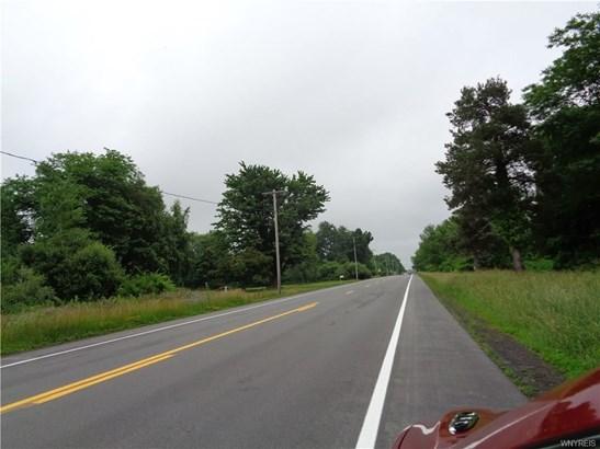 9905 Lewiston Road, Royalton, NY - USA (photo 3)