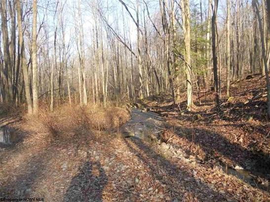 321 Weirton Mine Road, Morgantown, WV - USA (photo 1)