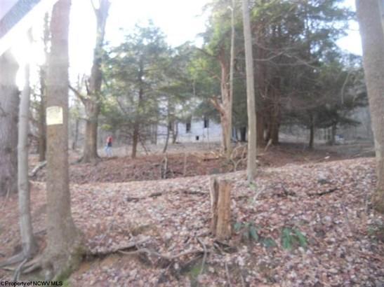 321 Weirton Mine Road, Morgantown, WV - USA (photo 2)