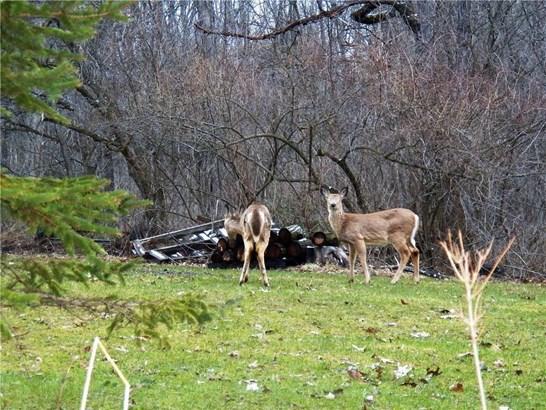 7686 Poplar Drive, Buffalo, NY - USA (photo 5)