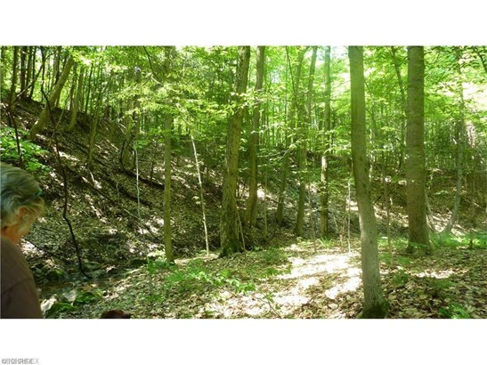10 Callow (10 Acres) Rd, Painesville, OH - USA (photo 2)