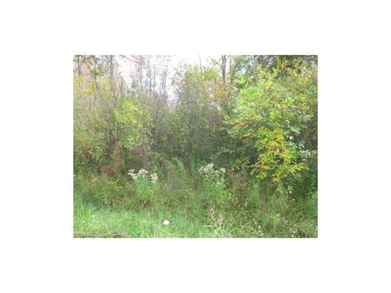 18535 Quinn Rd, Auburn Township, OH - USA (photo 3)