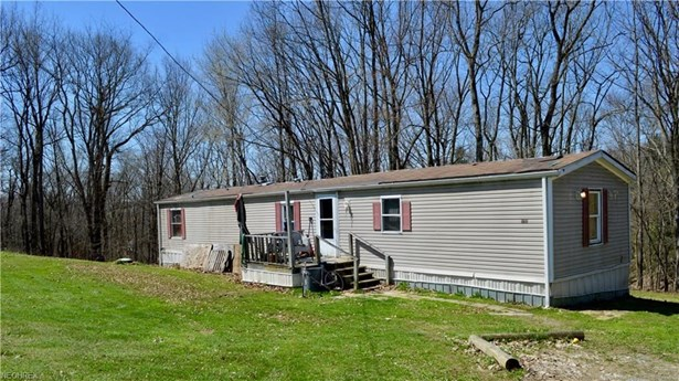 11369 Sprucevale Rd, East Liverpool, OH - USA (photo 5)