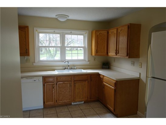 4615 Chestnut Rd, Independence, OH - USA (photo 5)