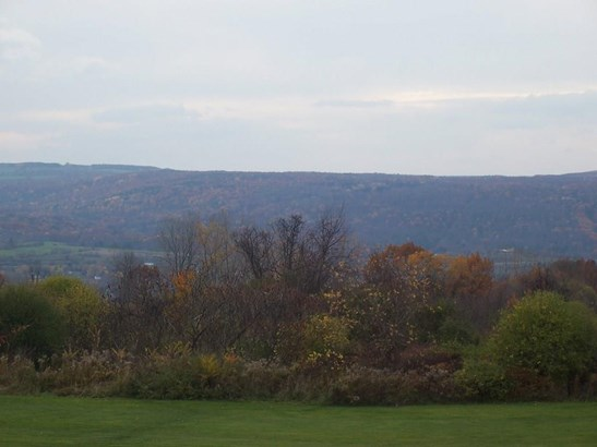 0 Reeds Corners Road, Dansville, NY - USA (photo 4)