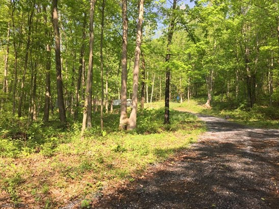 419 Polecat Hollow Road, Hopewell, PA - USA (photo 2)