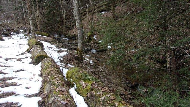 163 Bonnie Brae, Tidioute, PA - USA (photo 3)