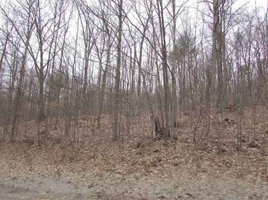 Lot C Guilder Hollow Road, Granville, NY - USA (photo 2)