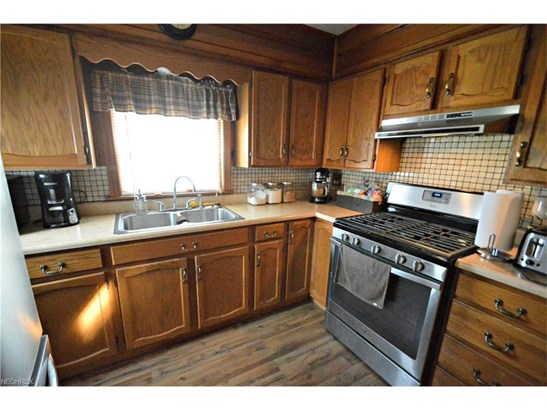 193 Wilson St, Struthers, OH - USA (photo 5)