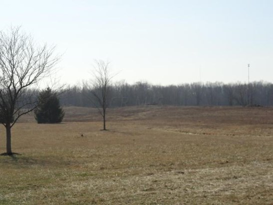0 County Road 121, Mount Gilead, OH - USA (photo 5)