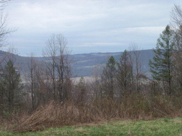 0 Locey Creek Road, Osceola, PA - USA (photo 1)