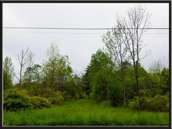 0 Caswell, Dryden, NY - USA (photo 2)