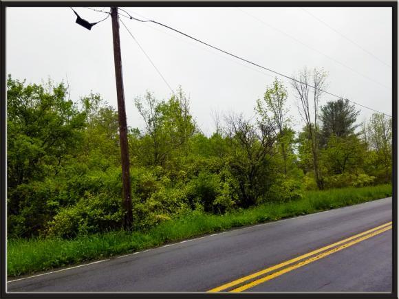 0 Caswell, Dryden, NY - USA (photo 3)