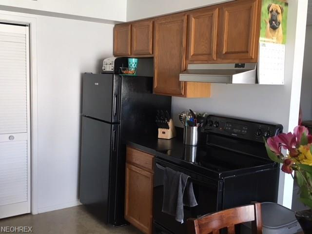 20331 Williamsburg Ct 226a, Middleburg Heights, OH - USA (photo 4)