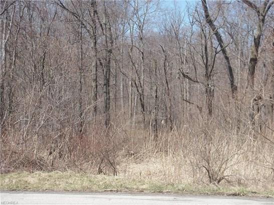S/l 8 Arborwood Way, Munson, OH - USA (photo 2)