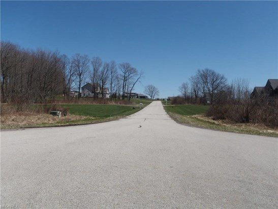 S/l 8 Arborwood Way, Munson, OH - USA (photo 5)