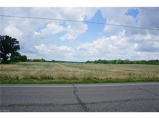 Lot 54 Waterloo Rd, Atwater, OH - USA (photo 1)