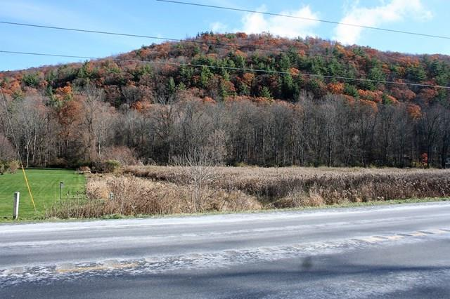 0 State Route 415, Campbell, NY - USA (photo 1)