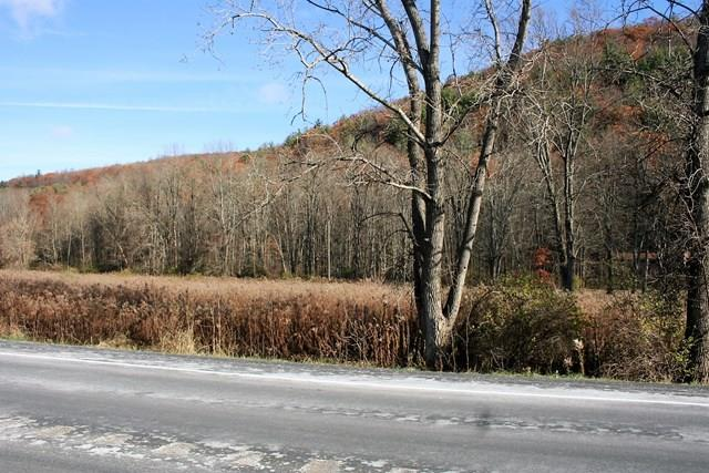 0 State Route 415, Campbell, NY - USA (photo 5)