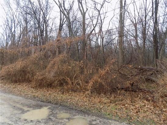Mapleview Ave, Sheffield Lake, OH - USA (photo 2)