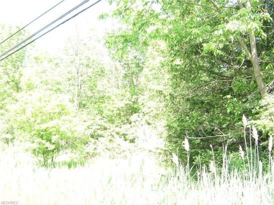 14797 Vl Chillicothe Rd, Novelty, OH - USA (photo 4)