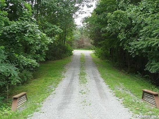 9906 Day Road, Wayne, NY - USA (photo 4)