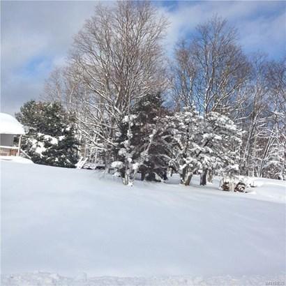 5096 Bigelow Road, W Valley, NY - USA (photo 2)