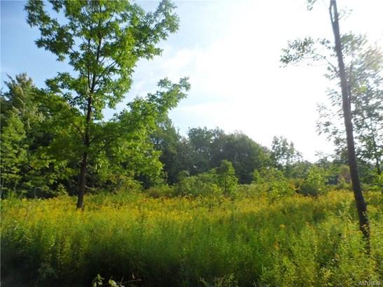 Vl Edward Corners Rd Across From 10188, Perrysburg, NY - USA (photo 4)