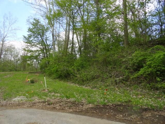 0 Quarry Ct., Lot #121, Chesterville, OH - USA (photo 2)