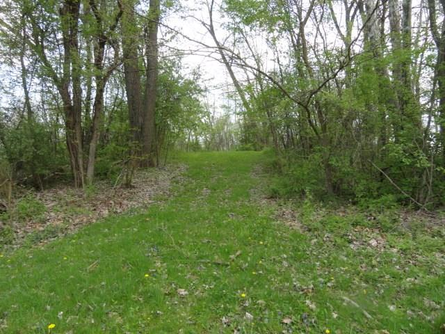 0 Quarry Ct., Lot #121, Chesterville, OH - USA (photo 3)