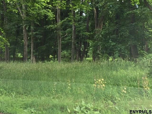 9 Cedar Dr, Selkirk, NY - USA (photo 3)