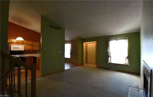 864 W Park Ave, Hubbard, OH - USA (photo 4)