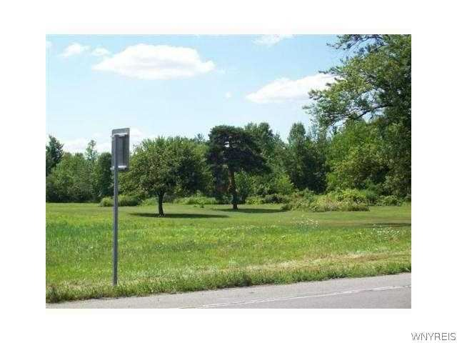 11300 Maple Ridge Road, Shelby, NY - USA (photo 2)