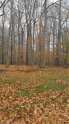 8690 Pheasant Run Ln, Kirtland Hills, OH - USA (photo 5)