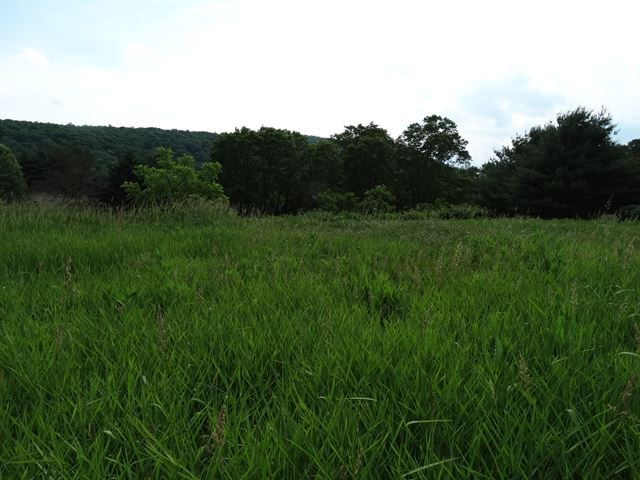 0 Riverwood Dr. Lot 3, Pine City, NY - USA (photo 2)
