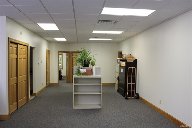 2390 North Forest Road, Amherst, NY - USA (photo 2)