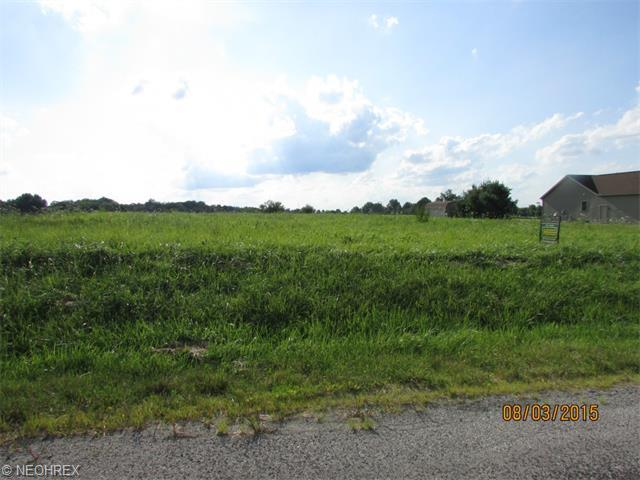 Pamer Lot 32, Atwater, OH - USA (photo 2)
