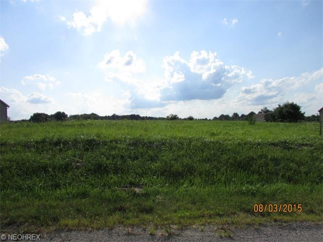 Pamer Lot 32, Atwater, OH - USA (photo 3)