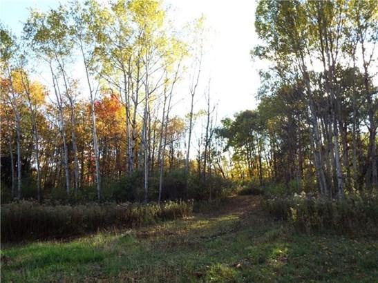 0 West Fall Road, Knapp Creek, NY - USA (photo 3)