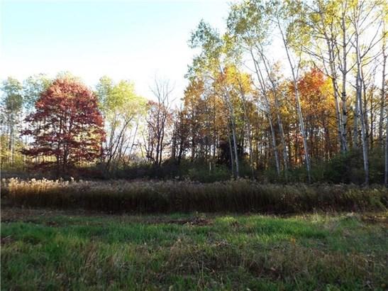 0 West Fall Road, Knapp Creek, NY - USA (photo 4)