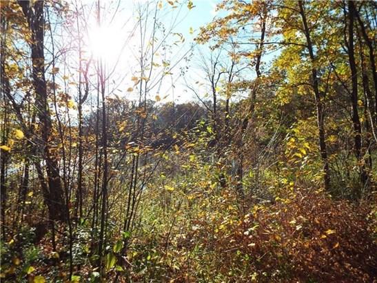 0 West Fall Road, Knapp Creek, NY - USA (photo 5)