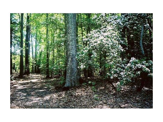 00-36 Preserve Drive, Lancaster, VA - USA (photo 1)